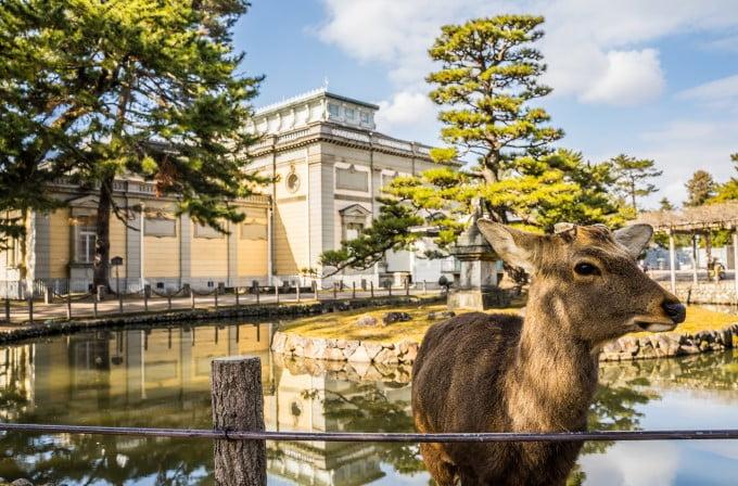 1,総合人材-奈良県 建物